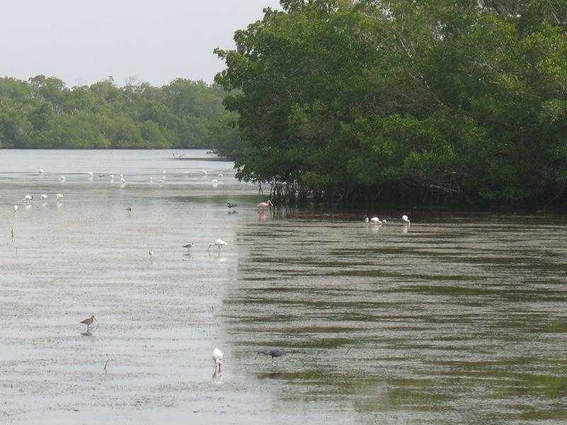 Capitva wildlife area