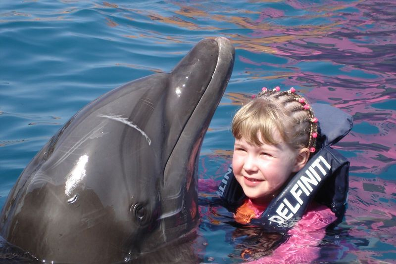 Swim with dolphins Ixtapa